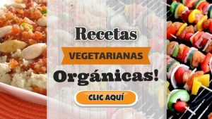 recetas vegetarianas organicas